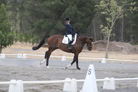 SI_Festival_of_Dressage_310115_Level_1_Champ_0670