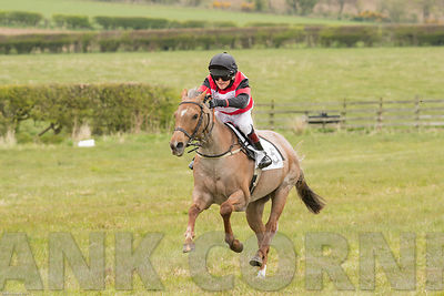 Push The Button, Thomas Bradburne winning Pony Race at Balcormo point-to-point on 29Apr2017.