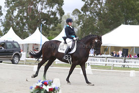SI_Festival_of_Dressage_310115_Level_6_7_MFS_0653