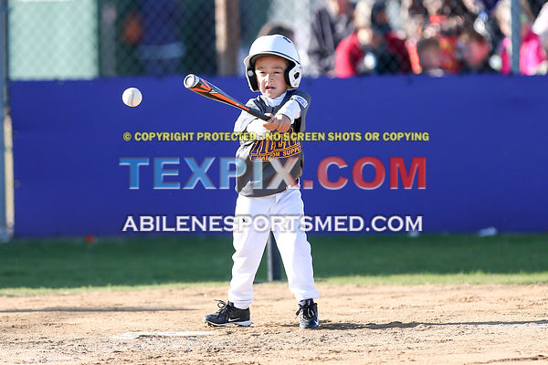 04-08-17_BB_LL_Wylie_Rookie_Wildcats_v_Tigers_TS-439