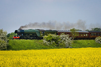 Flying_Scotsman_28.05.16-12-2