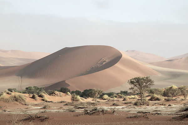 Sand dune images