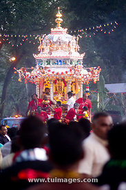 thaipusam chariot procession