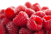 raspberries against white