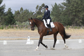 SI_Festival_of_Dressage_310115_Level_1_Champ_0662