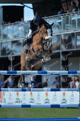 Whitaker John (GBR) and TALISMAN DE MAZURE