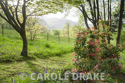 The foothills of Snowdonia are glimpsed from the garden at Maenan Hall.