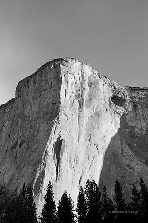 EL CAPITAN YOSEMITE NATIONAL PARK BLACK AND WHITE