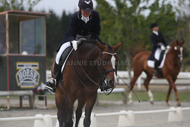 SI_Festival_of_Dressage_300115_Level_9_SICF_0494