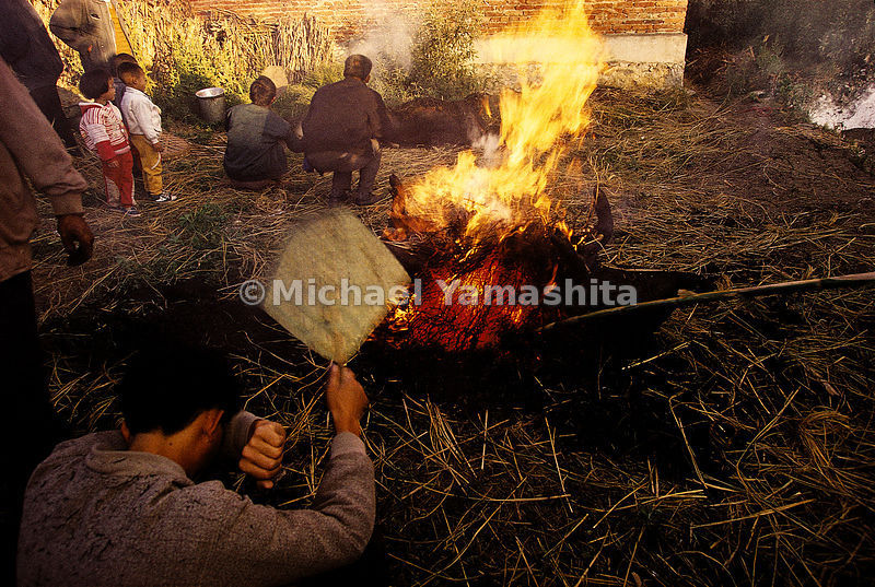 In preparation of a wedding banquet in the village of Shazun, Yunnan, the pig is placed on the fire to burn off the bristles, then eaten raw
