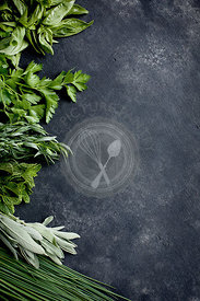 Green Herbs bordering a black/grey background. Photographed from top view.