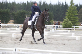 SI_Festival_of_Dressage_300115_Level_7_0271