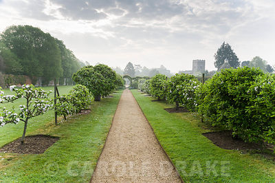 Lines of espaliered apple trees frame a path running through the Walled Garden. Rousham House, Bicester, Oxon, UK
