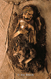 Unwrapped Incan Mummy, Lima Peru