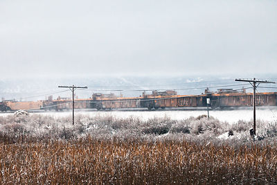 Winter scene along the railroad running next to the Lower Klamath NWR, California. This railroad is what original cut off water to the lake and wetlands almost 100 years ago.