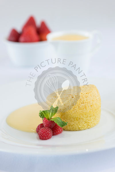 The Picture Pantry Food Stock Photo Library | Sponge ...