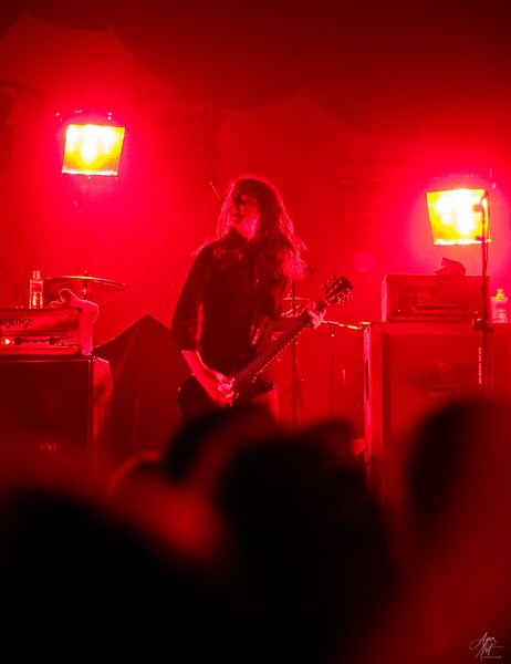 The Datsuns photos