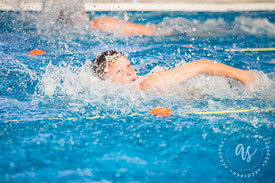 Waihi_Swimming_Sports_2017-12