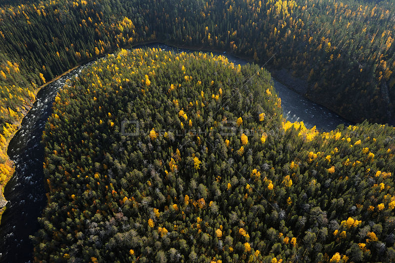Aerial view of Kitkajoki River, Oulanka National Park, Finland, September 2008