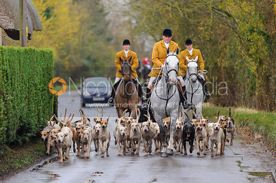 Kimblewick Hunt photos