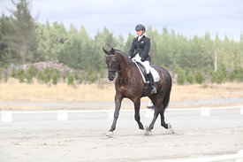 SI_Festival_of_Dressage_310115_Level_1_Champ_0678