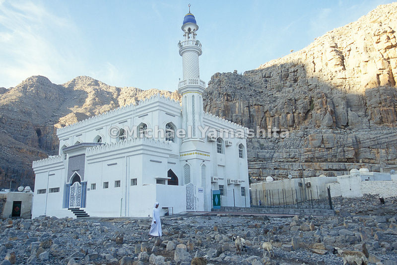 A herder tends to his flock of sheep in front of a mosque on the Musandam Peninsula, Oman.