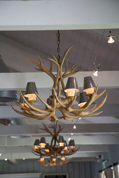 Antler light fittings