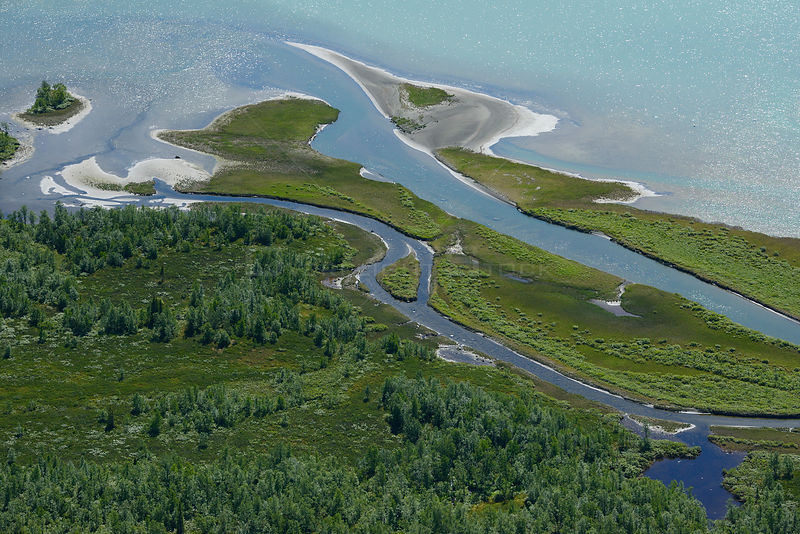 Aerial view of the Rapa river delta flowing into Lake Laitaure, Sarek National Park, Greater Laponia Rewilding Area, Lapland, Norrbotten, Sweden, June 2013.