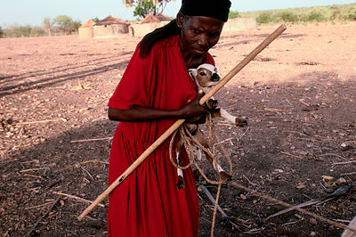Asumpaheme catches and ties their goats for the afternoon