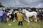 Street scenes at Appleby Horse Fair in Cumbria, where horses are sold in the streets. UK