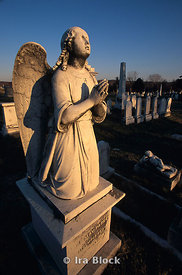 congressional cemetery, washington, DC