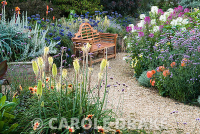 Gravel paths through the sunken garden are edged with a mass of colourful perennials and annuals including cleomes, agapanthus, eucomis, dahlias, Verbena bonariensis and kniphofias. Crab Cottage, Shalfleet, Isle of Wight, UK
