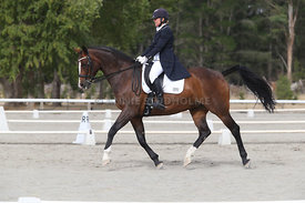 SI_Festival_of_Dressage_300115_Level_9_SICF_0449