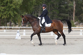 SI_Festival_of_Dressage_300115_Level_9_SICF_0448
