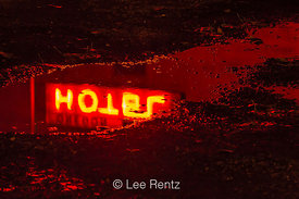 Neon Hotel Sign Reflected in Road Puddle in Mitchell, Oregon