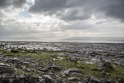 Limestone beach, The Burren, Ireland