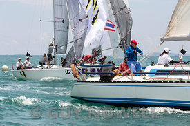 Easy Tiger, Hi-Jinks. Top of the Gulf Regatta 2017