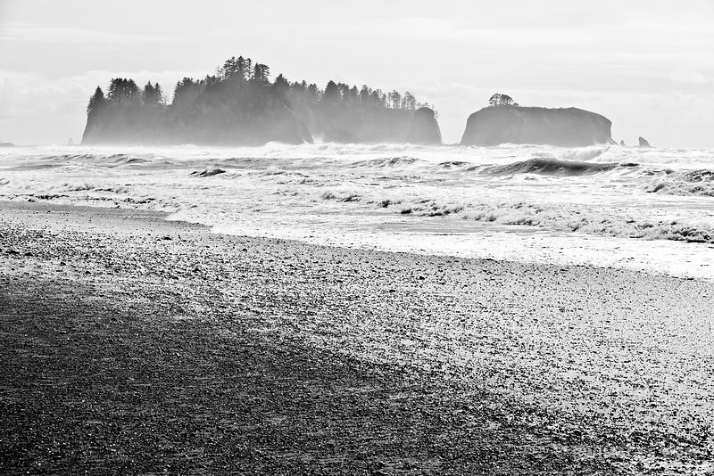 Olympic National Park Washington - Black and White Photos Stock Photos Canvas Framed Fine Art Prints