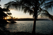 palm tree on Lake Malawi at sunset, Nkhata Bay, Malawi