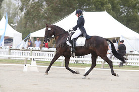 SI_Festival_of_Dressage_310115_Level_6_7_MFS_0643