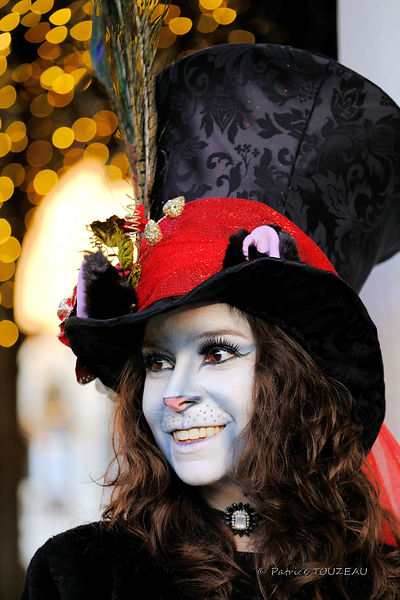 Photo or picture of Venice carnival 2017