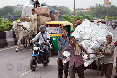 The diversity of transportation in India. An auto-ricksahw, ox cart, motorcycle, and hand-pulled cart share the road near the Delhi Railway Station, Delhi, India.