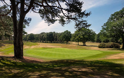Woking Golf Club Est 1893 photos