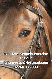 021__KSB_Kennels_Exercise_161212