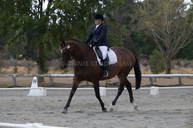 SI_Festival_of_Dressage_300115_Level_3_NCF_0094