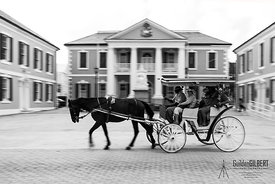 Horse and Buggy - Nassau, Bahamas