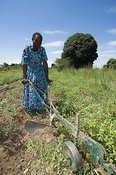 African woman in blue dress using hand plough in fields Uganda Africa