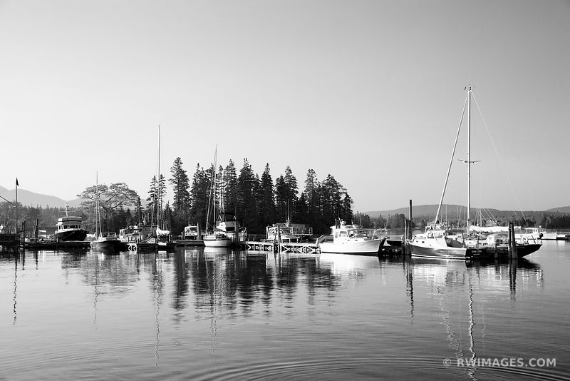 BERNARD HARBOR MAINE NEAR ACADIA NATIONAL PARK BLACK AND WHITE