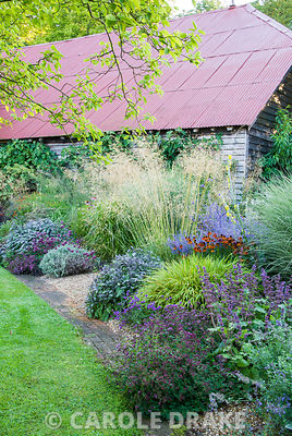 Colourful clumps of Hakonechloa macra 'Alboaurea', Salvia officinalis 'Purpurascens', Verbena rigida, Helenium 'Moerheim Beauty' and Perovskia 'Blue Spire' below airy grasses including Stipa gigantea, Miscanthus 'Morning Light' and Molinia 'Transparent' Broughton Buildings, Broughton, nr Stockbridge, Hants, UK