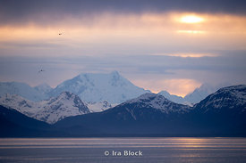 View of Mount Fairweather at sunset, South Eastern Alaska.